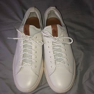 Polo Dunovin Leather Sneakers